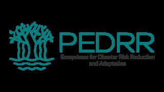 PEDRR(環境と災害リスク削減のためのパートナーシップ)